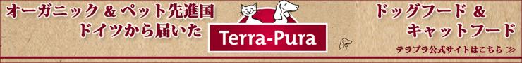 テラプラ公式サイトはこちら
