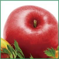 テラプラにはリンゴとにんじんがたっぷり