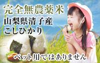 米 こしひかり 完全無農薬米 ロアジス米